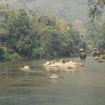 Trekking sugli elefanti