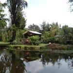 Canais de Xochimilco