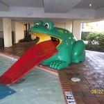 frog slide in kiddie area