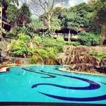 Pool waterfall and rockery