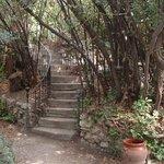 Stairs in Atelier Cezanne's garden