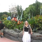 Living Seas Garden
