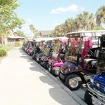 Lake Sumtner everyone comes in a golf cart to shop & eat.