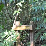 Titti Trail