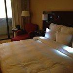 Room #239