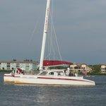 Sweet Liberty catamaran coming in to dock