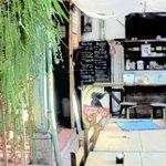The Juice Bar, guatemalan coffee, organic tea & +