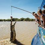 Jumping Crocs Cruise, Yellow Waters