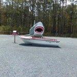 JAWS on premises