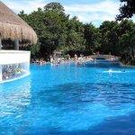 La piscine avec le bar