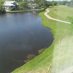 View down the golf hole from our window (with the Alligator)