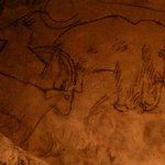 Пещера Руффиньяк, потолок