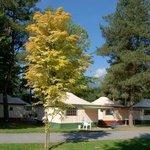 Foto de TCS Camping Sion