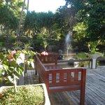 Entrance garden
