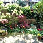 The B&B garden