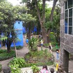 garden of frida kahlo museum
