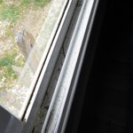 Rebord de fenêtre jamais nettoyé
