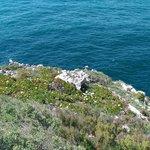 View at Cape St Vincent (World's End)