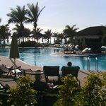 Adult pool area