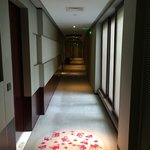 Passage to room. I like how the spot lights pointed to the circle on the carpet. The attention t