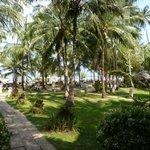 Parc vers la plage