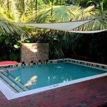 Petite piscine bien agréable