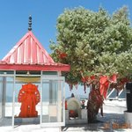 Idol of Hanumanji and The Wish Tree