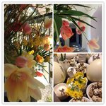 Fresh flower arrangements and Easter decor at The Grand Sofitel