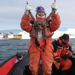 King Crab success - with Kongsfjord Gjestehus in the background