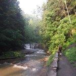 nice riverside walk thru trees