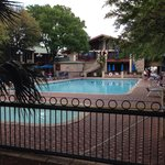 Pool area- 4/17/2014