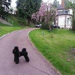 L'entrée dans le parc de la Ferme en ville