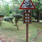 Kenting National Forest Recreation Area 墾丁國家森林遊樂區