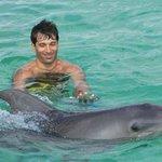 Dolphin Isla Park 1