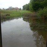 vue depuis la grande fenêtre de la cabane flottante