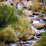 El rio que baja por el valle de Cochiguaz