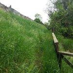 passaggio nell'erba alta