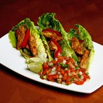 Healthy Lakeshape Faita Wraps