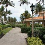 Wyndham Grand Rio Mar Beach Resort & Spa  jardín