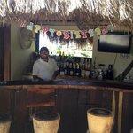 Leo at the bar!