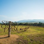 Stony Creek Farm B&B