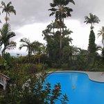 Panoramic view of pool, garden and lanai