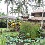 The Lush tropical compound of Villa Semana