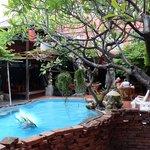Villa Cha-Cha - swimming pool
