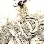 Spiaggia, sole ,mare Hotel delfino