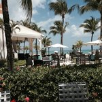 Outdoor restaurant - lounges - South Beach style