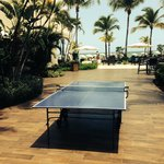 Clean well maintained grounds around property - ping pong