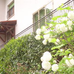 Esterno Casa Balducci