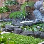 Un autre bassin