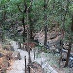 Warm-water waterhole and path